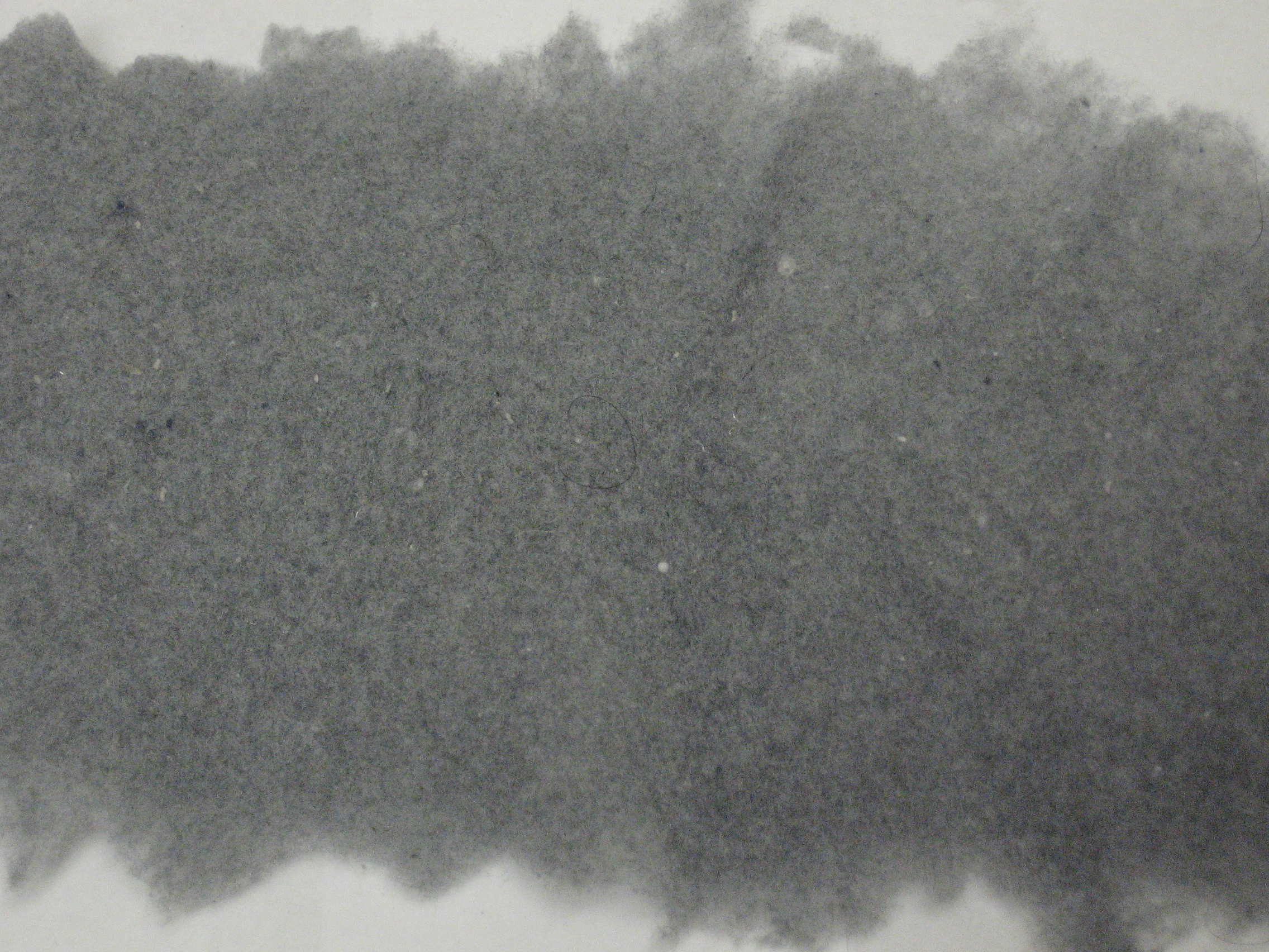 English: A close-up of dryer lint