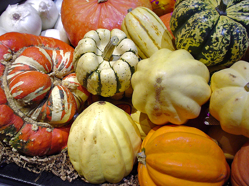 https://i1.wp.com/upload.wikimedia.org/wikipedia/commons/b/bd/Squashes.jpg