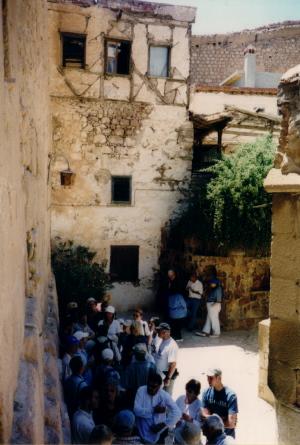 The bush at St. Catherine's Monastery, Sinai, ...