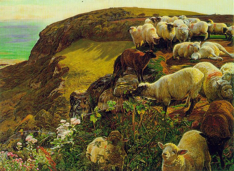 Ficheiro:Hunt english coasts.jpg