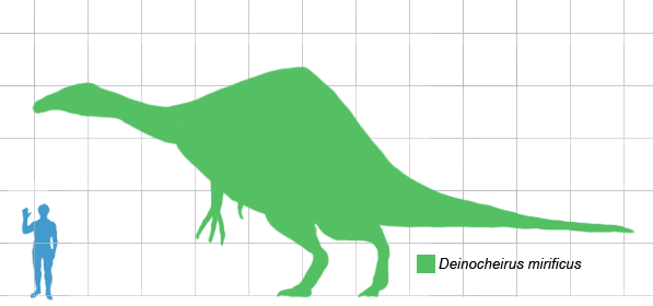https://i1.wp.com/upload.wikimedia.org/wikipedia/commons/c/c4/Deinocheirus_scale.png