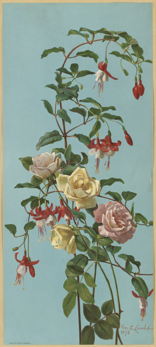 https://i1.wp.com/upload.wikimedia.org/wikipedia/commons/c/c4/Roses_and_Fuchsia_by_Boston_Public_Library.jpg