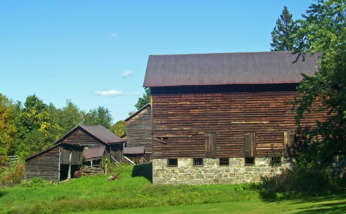 City Farmhouse