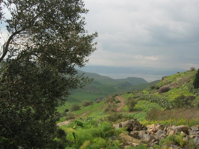 File:Ein Fiq, Golan Heights - 20040223-03.jpg