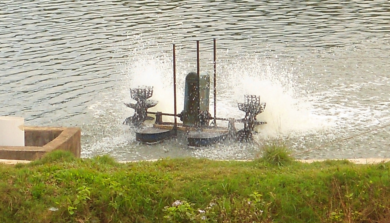 Farm Pond Aeration Systems