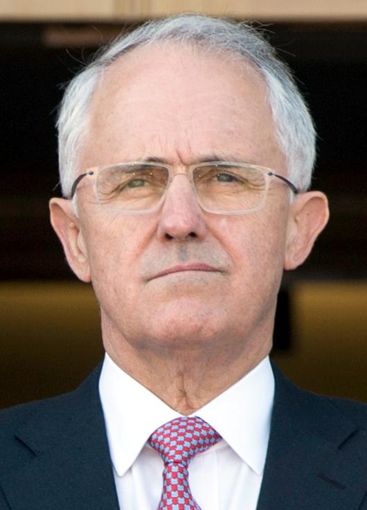Malcolm Turnbull Wikipedia