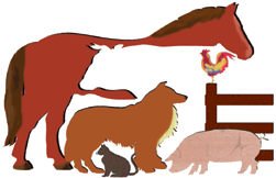 Center for Veterinary Medicine logo