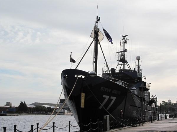 File:MY Steve Irwin-Sea Shepherd Conservation Society-bow ...