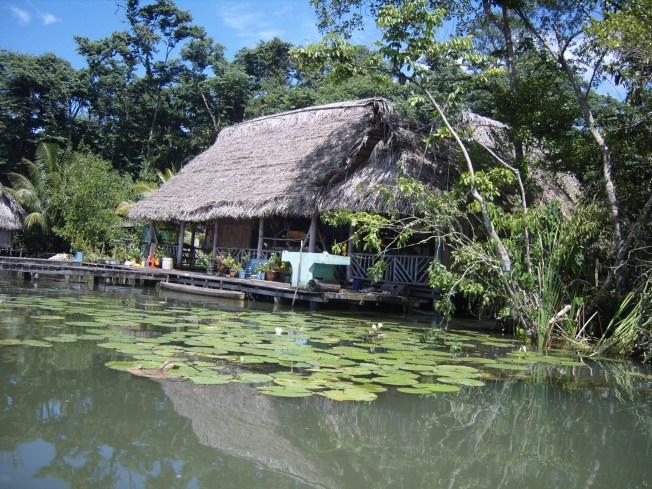 https://i1.wp.com/upload.wikimedia.org/wikipedia/commons/d/d2/Guatemala_Rio_Dulce_hut_S1033058.JPG?resize=652%2C489&ssl=1