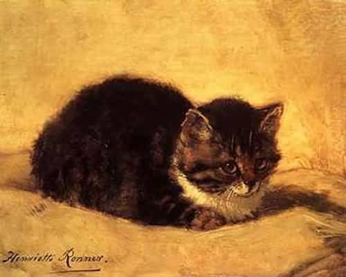 Henriette-Ronner-Knip-Cat