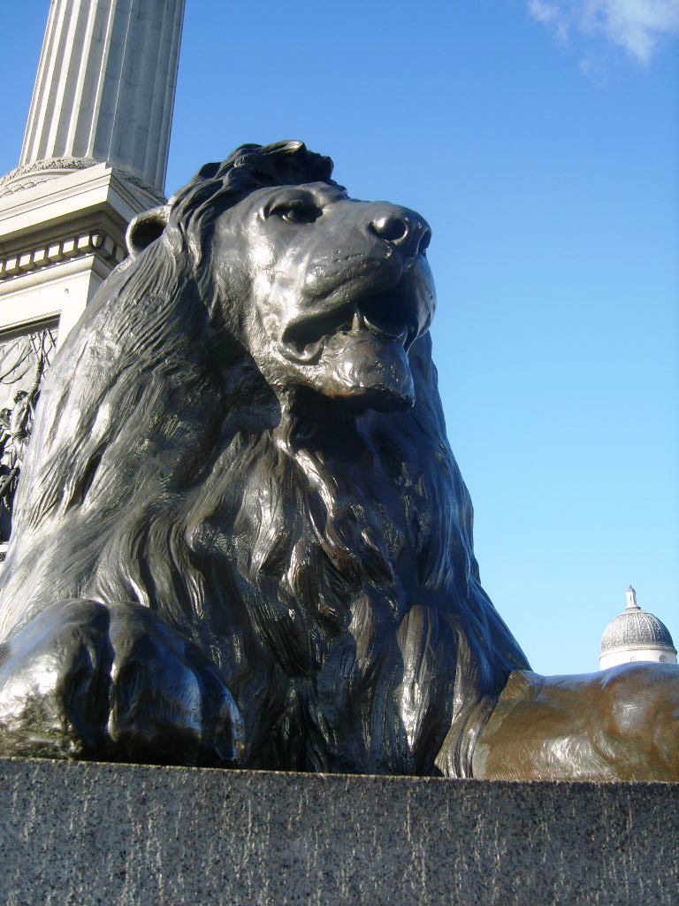 Trafalgar square, tér, lion, oroszlán, Nelson, London