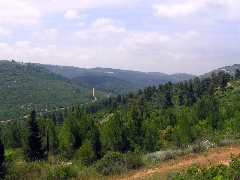 Image Result For Lebanon Hills Mountain