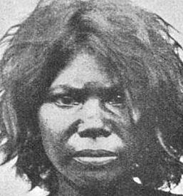 Australo Melanesian Wikipedia