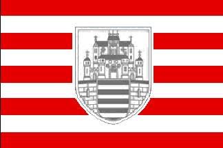 Esztergom zászlaja