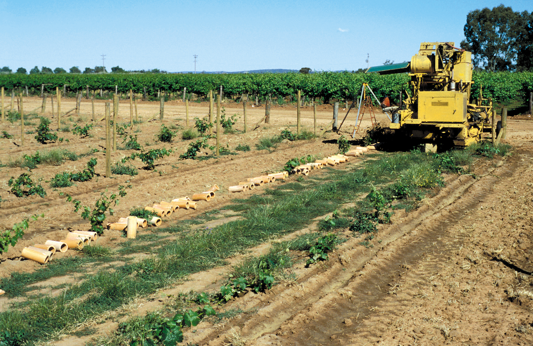 file csiro scienceimage 4474 tile drainage installation machine on farm in griffith nsw machine is installing clay tile drainage pipes in area planted with young grapevines mature vines in background jpg wikimedia commons
