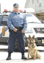 NJ Transit Police K-9 officer, with dog.