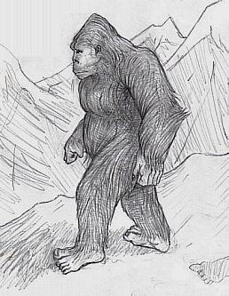 Sasquatch Yeti Bigfoot Bugerbear Yowie