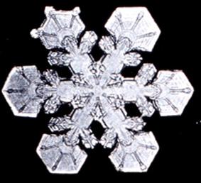 File:Snowflake4.png