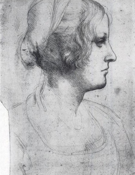 Renaissance woman, Leonardo Da Vinci