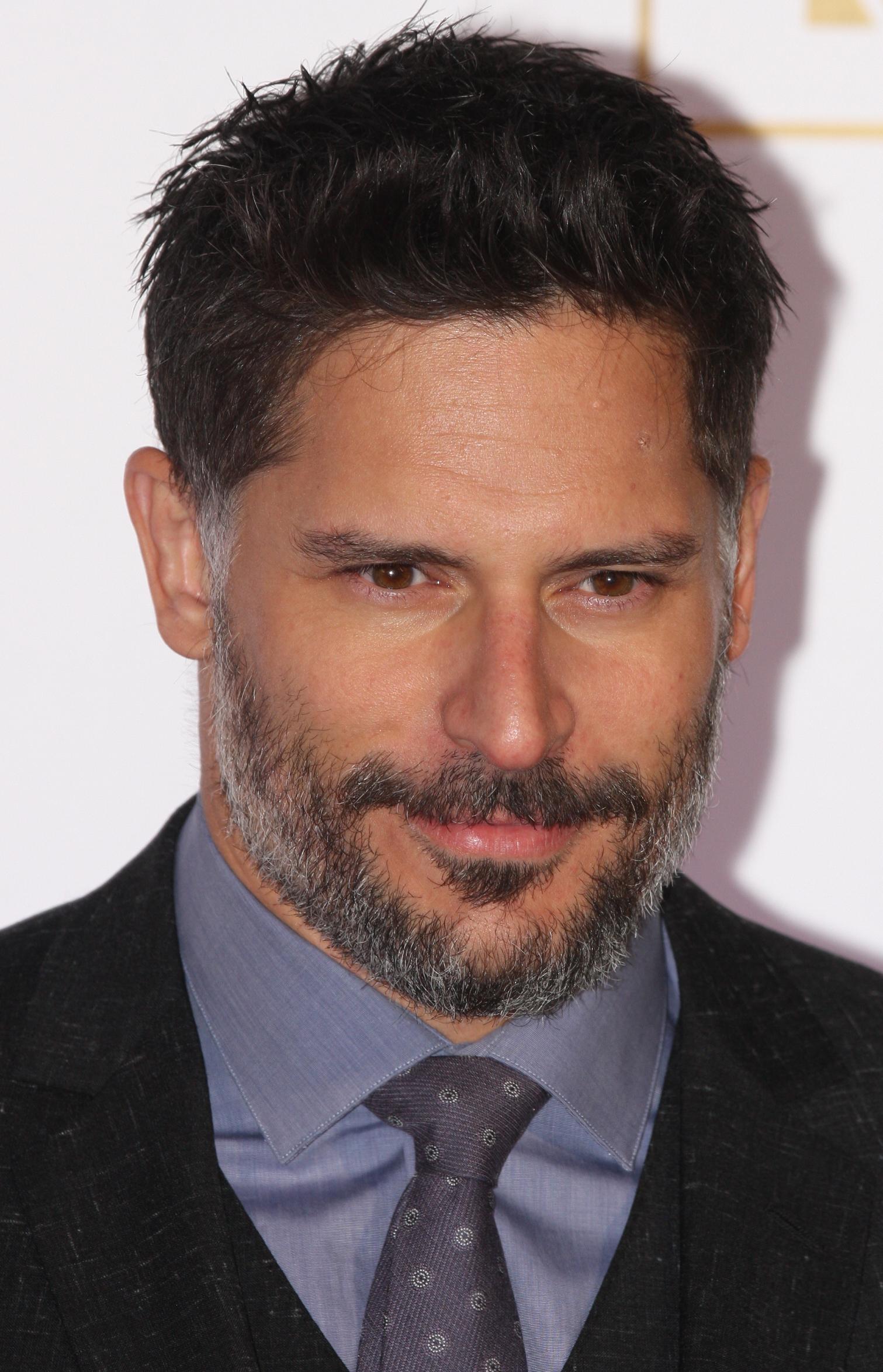 Joe Manganiello Wikipedia