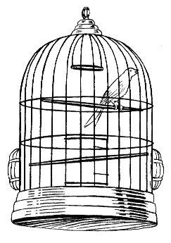 https://i1.wp.com/upload.wikimedia.org/wikipedia/commons/e/ec/Cage_%28PSF%29.jpg