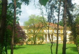 Savarsin Royal Palace - DISKOteka Festival 2019 Timisoara private tour | Music events in Romania
