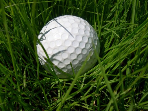 Golf ball grass