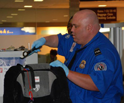 English: A TSA officer screens a piece of luggage.