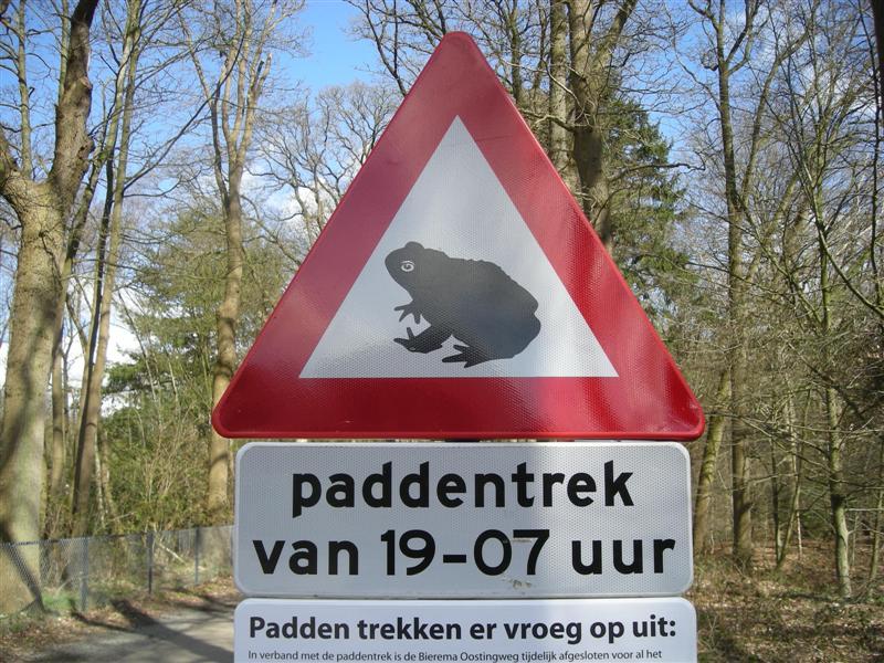 File:Paddentrek Oranjewoud 02.JPG