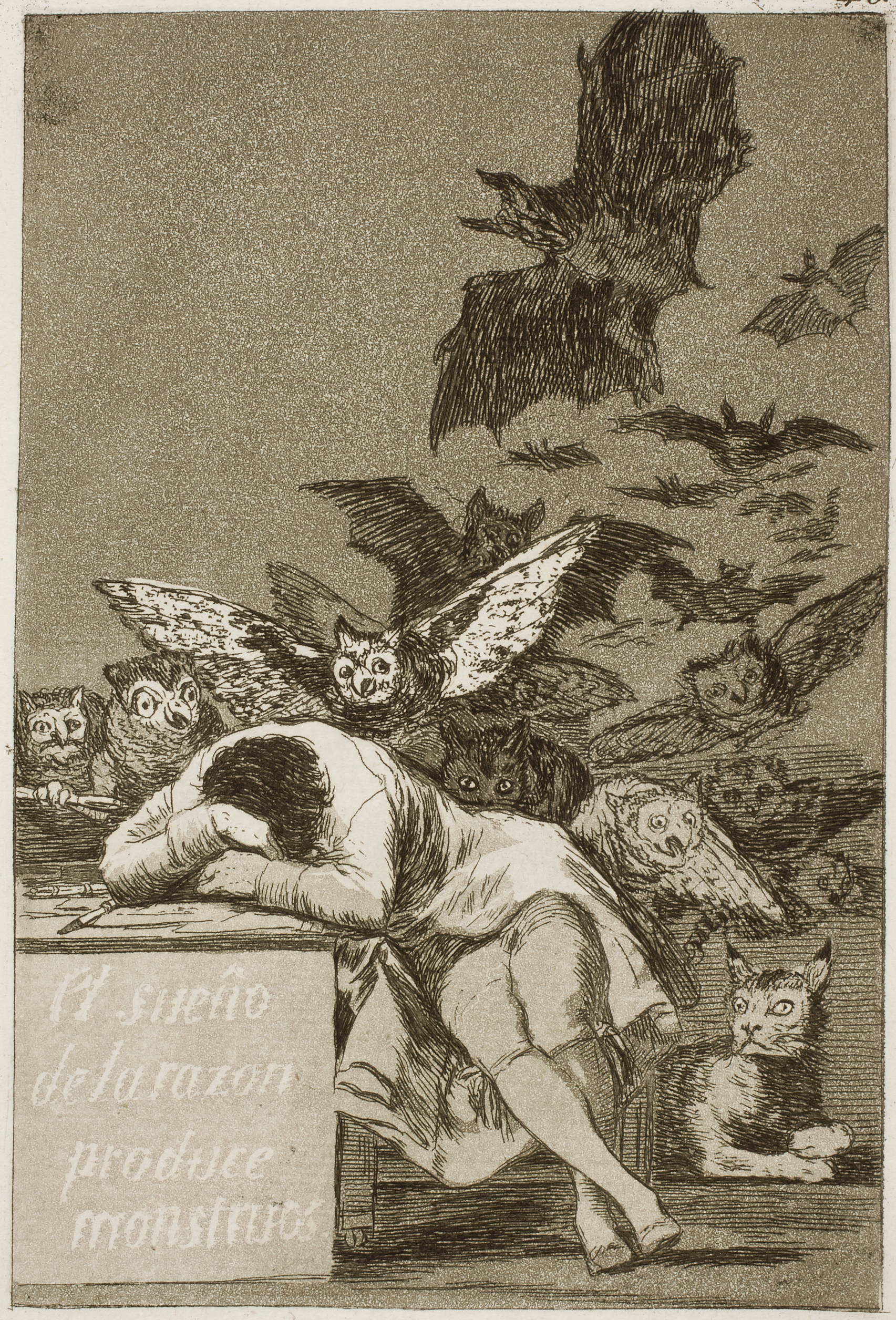 The sleep of reason produces monsters. Francisco Goya (1746-1828).