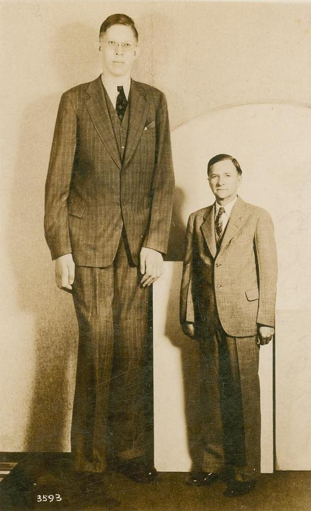 robert wadlow, (height in hindi)