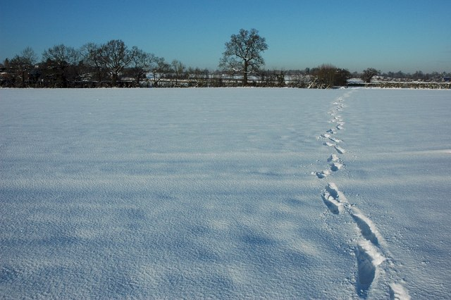English: Footsteps on a bridleway My footsteps...