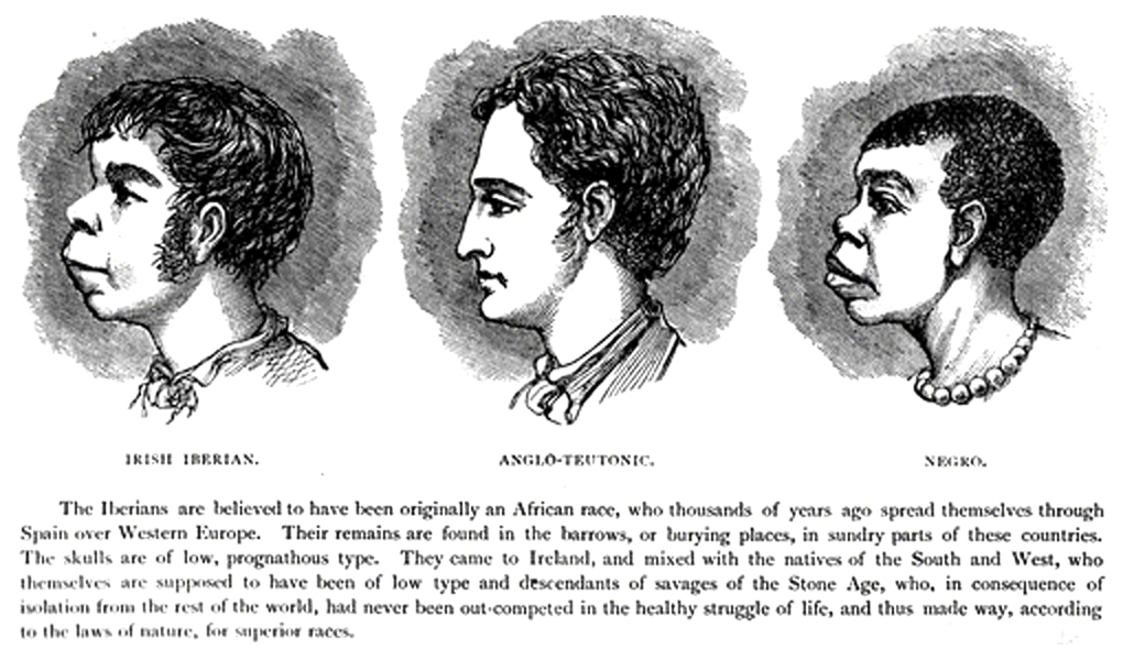 A hideous 1899 illustration from Harper's Weekly, comparing the facial features of Irish people to those of English and generically African descent