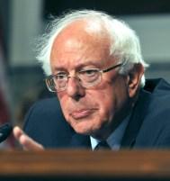 Bildergebnis für Bernie Sanders public domain