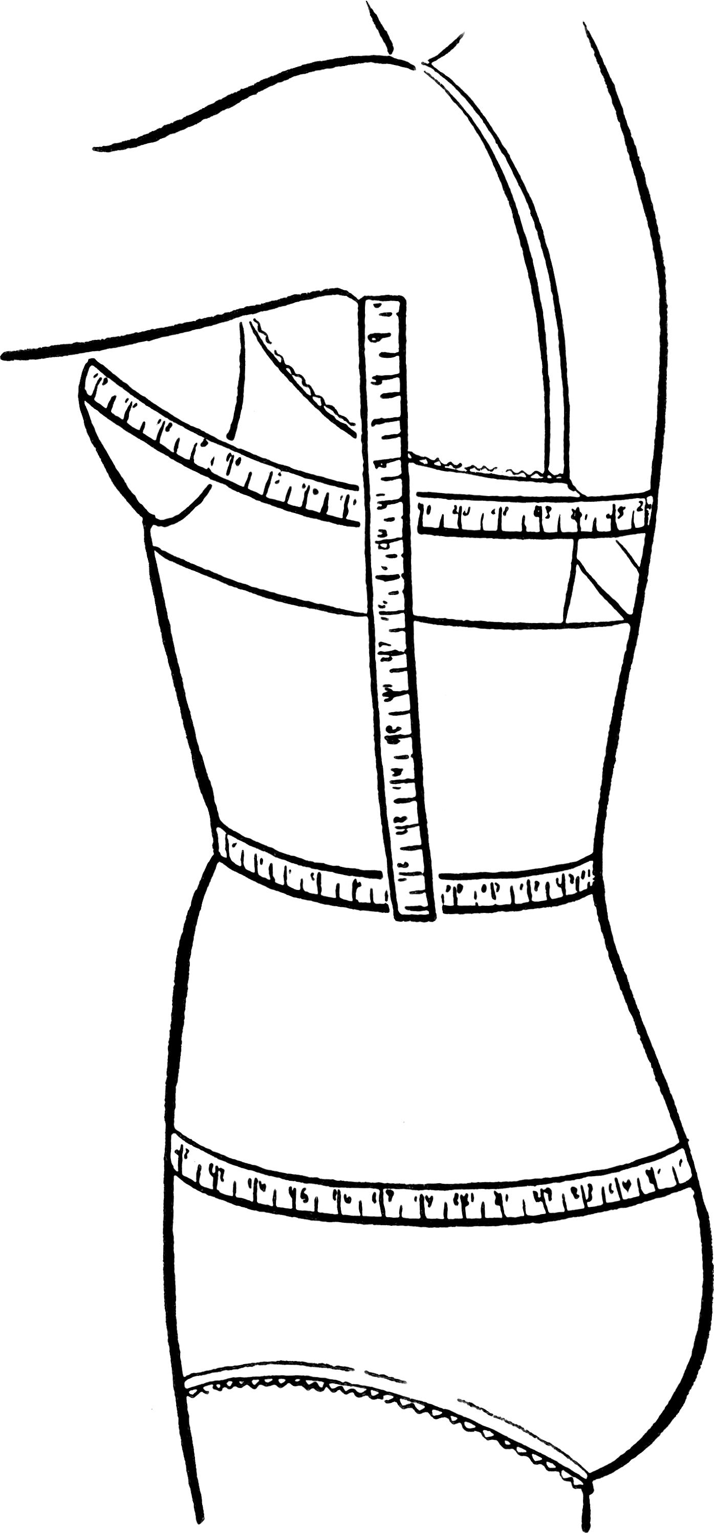 Bust Waist Hip Measurements