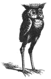 An image of the demon Stolas