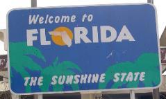 Sunshine state plate
