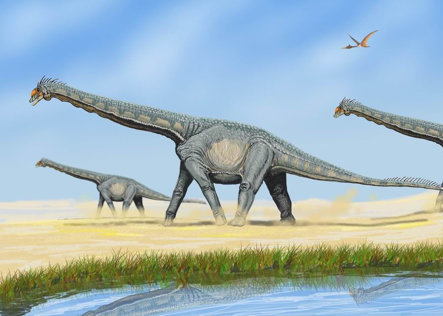 Co znamená absolutní datování fosilií