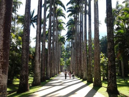 Jardín Botánico (Wikipedia)