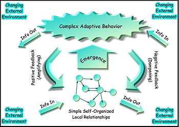 A system with high adaptive capacity exerts complex adaptive behavior in a changing environment.