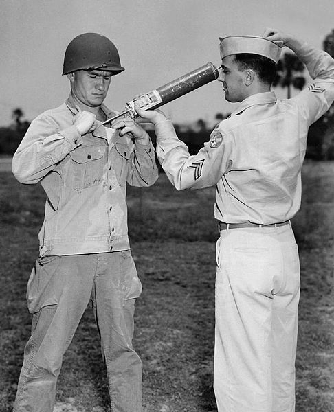 World War II soldier gets DDT to kill lice - CDC photo, Wikimedia