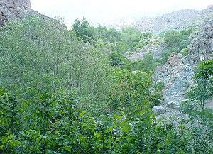 Golabdarre Valley in the North of Tehran, Iran.