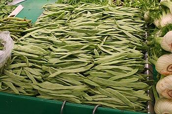 Haricots verts plats frais (Phaseolus vulgaris)