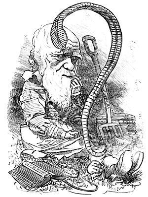 The worm turns - cartoon of Charles Darwin