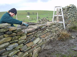 Dry stone wall building in South Wales