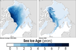 Arctic Sea ice age in February 2008 compared to the average for 1985-2000 (NASA)
