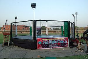 English: The mma octagonal cage constructed by...
