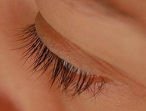 Cils - Eyelashes