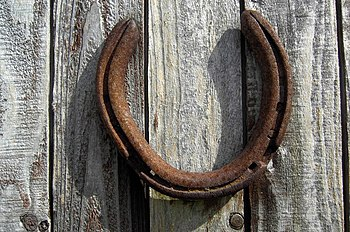English: Lucky Horseshoe A lucky horseshoe nai...