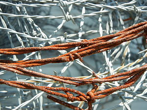 English: Roll of rusty barbed wire on a farm